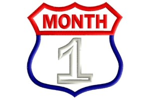 Route Patch Monthly Milestones