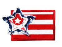 Frayed Star American Flag